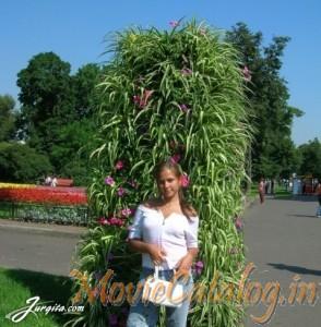 anastasia-polishchuk-109400-52908